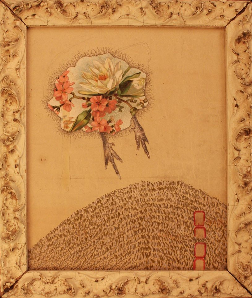"[A piece from Dan Barry's ""Flowerbird / fiore di uccelli"" series; found frame and paper, graphite and Elmer's glue; dimensions unknown, 2011."
